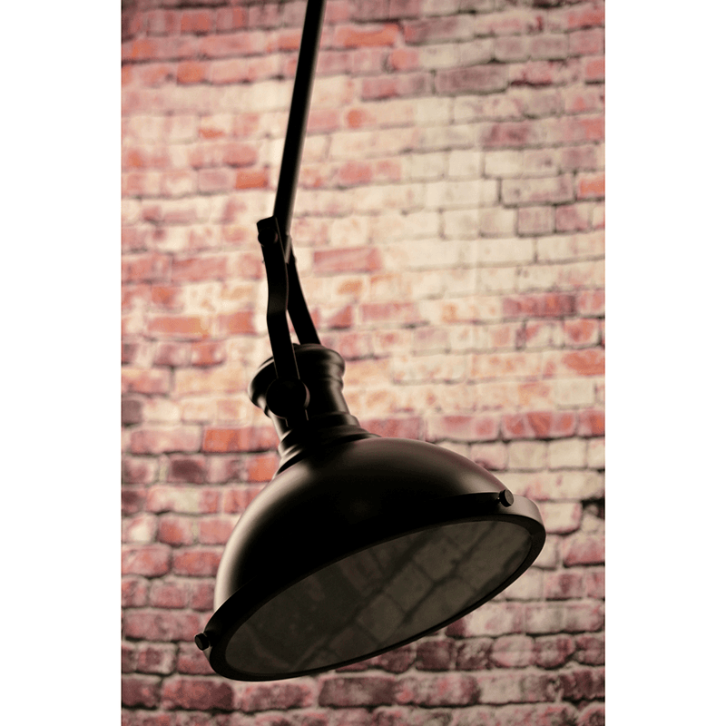 Fermont Adjustable Traditional Iron Studio Ceiling Light