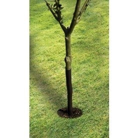 61cm Spiral Tree Guard
