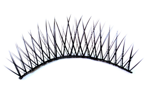 C1 Eyelashes (10-Pair Box)