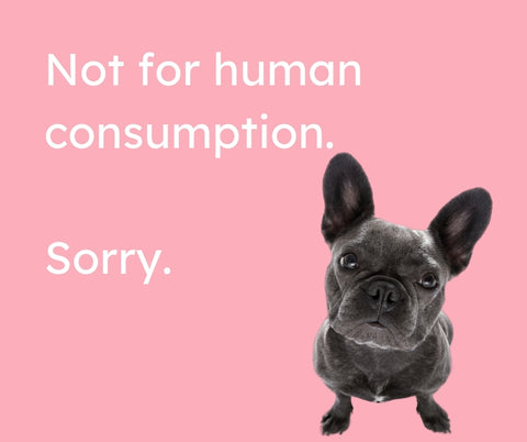 """French bulldog looking upwards next to the words """"not for human consumption. sorry."""" 