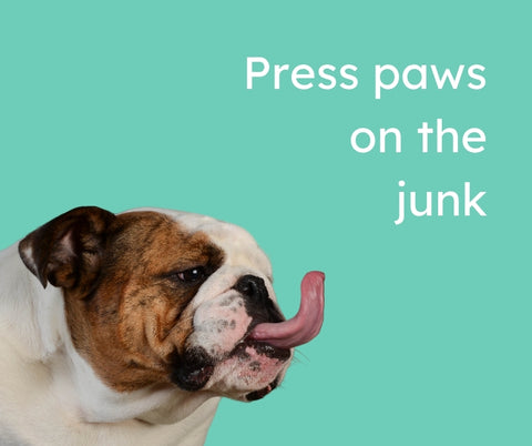 """A bulldog with his tongue out with the words """"press paws on the junk"""" 