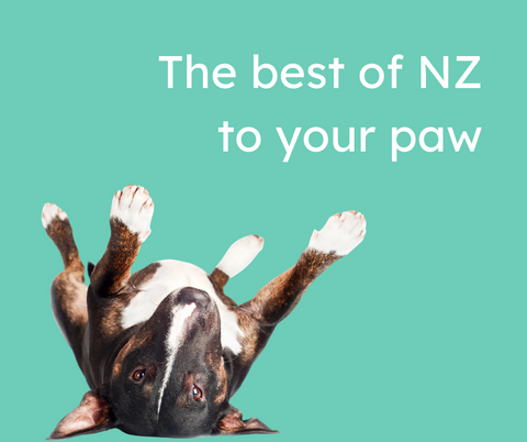 "A brindle bull terrier lies upside down with the words ""the best of NZ to your paw"" 