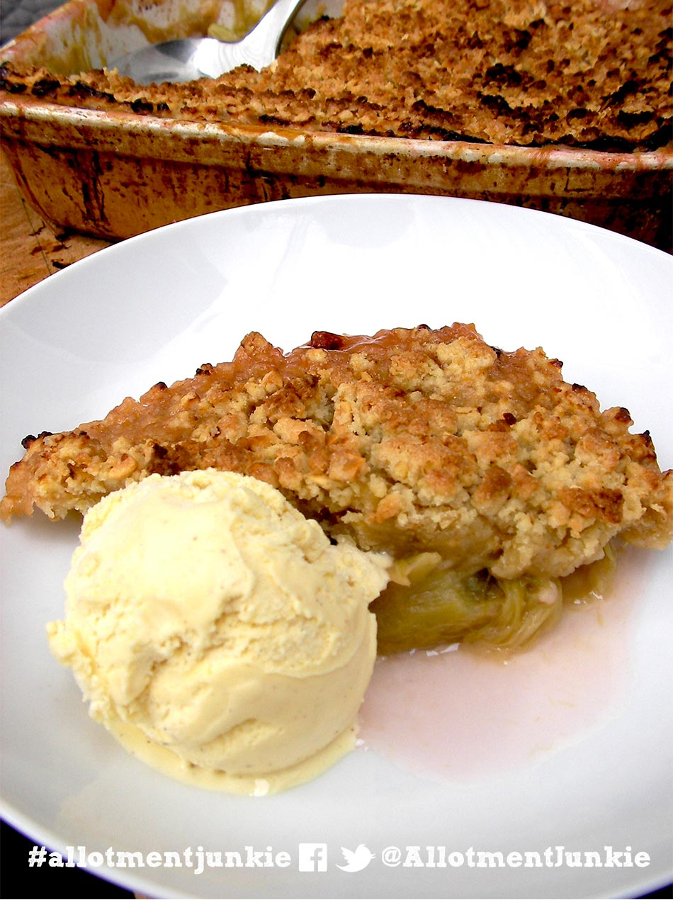Rhubarb crumble with ice cream in a dish