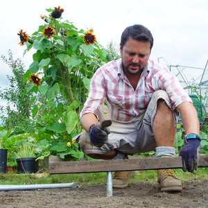 Photo of Allotment Junkie on the allotment plot