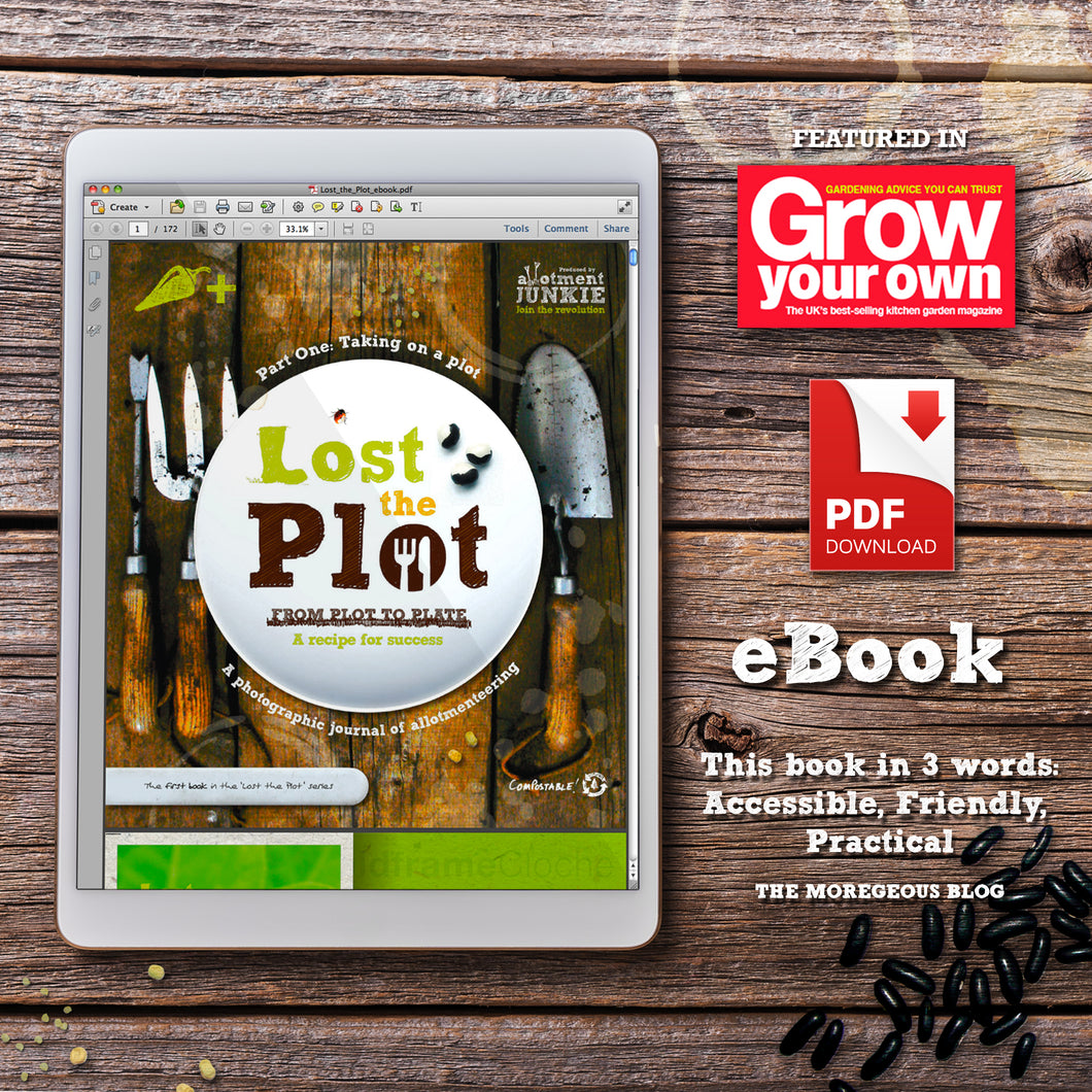 Lost the Plot - eBook - image of an ipad on textured board surface displaying the PDF book by allotment junkie