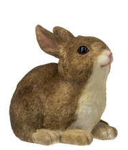 Load image into Gallery viewer, Bunny figure