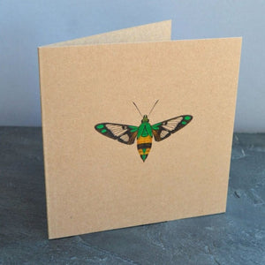 Greetings Cards - Kevin Williamson