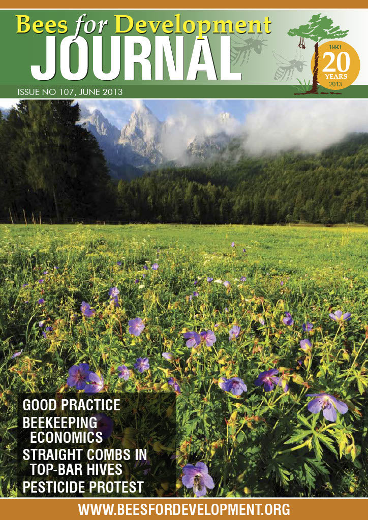 Bees for Development Journal Issue 107, June 2013 (Digital Download PDF)