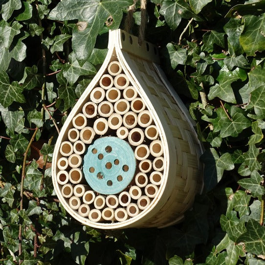 Dewdrop bee hotel - Wildlife World