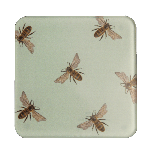 Honey bee glass coaster - Claire Vaughan