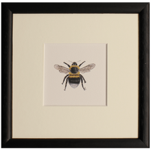 Load image into Gallery viewer, Bee print - Claire Vaughan Designs