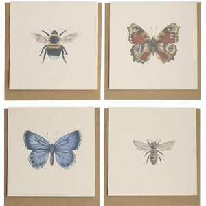 Insect notecards - Claire Vaughan Designs