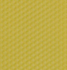 Beeswax Foundation (Packs of 10)