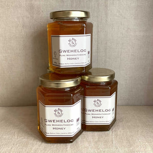 Gwehelog honey - BC Bees