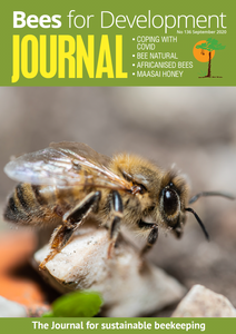 Bees for Development Journal Issue 136, September 2020 (Digital download)