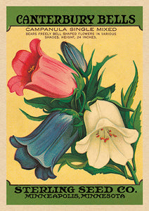 Greetings Cards  - Vintage Seed Packet 'Myrtle's Garden' Collection