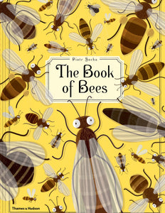 The book of bees - Socha