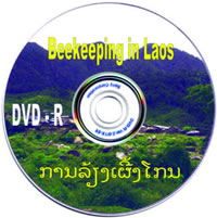 Beekeeping in Laos