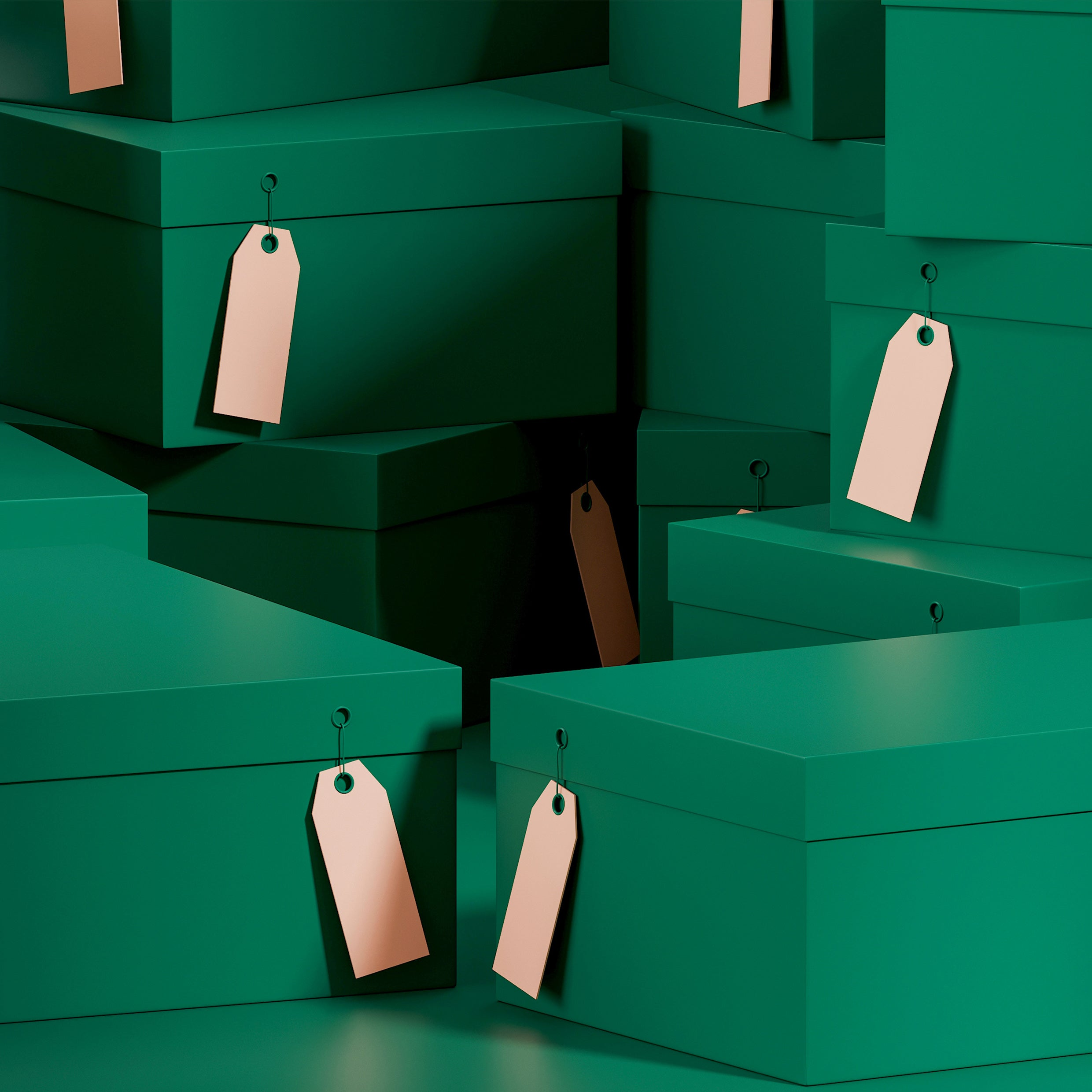 Green shoeboxes with brown swing tags