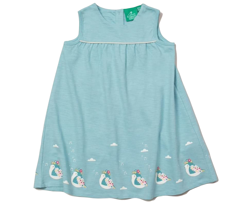 Little Green Radicals Baby & Kids The Birds Did Sing Storytime Dress