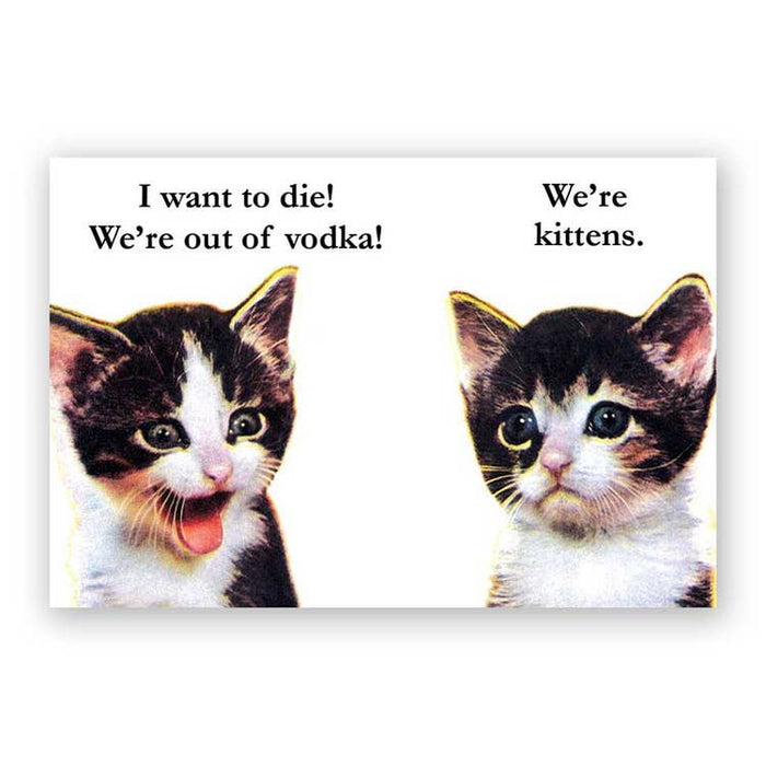 Vodka Kittens Magnet