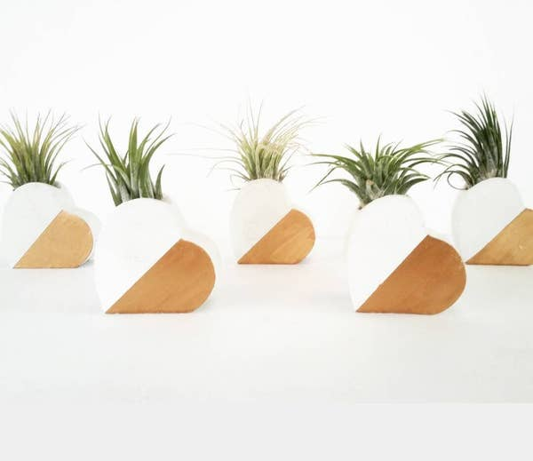 Concrete Heart Air Plant Holder - White