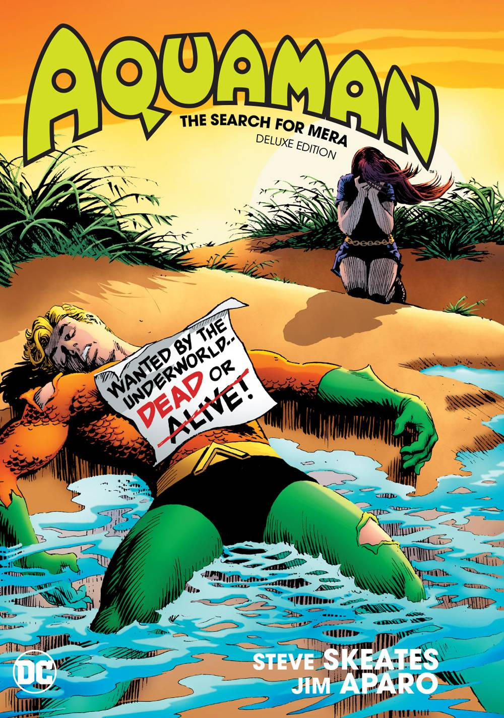 Aquaman The Search For Mera Deluxe Ed Hc
