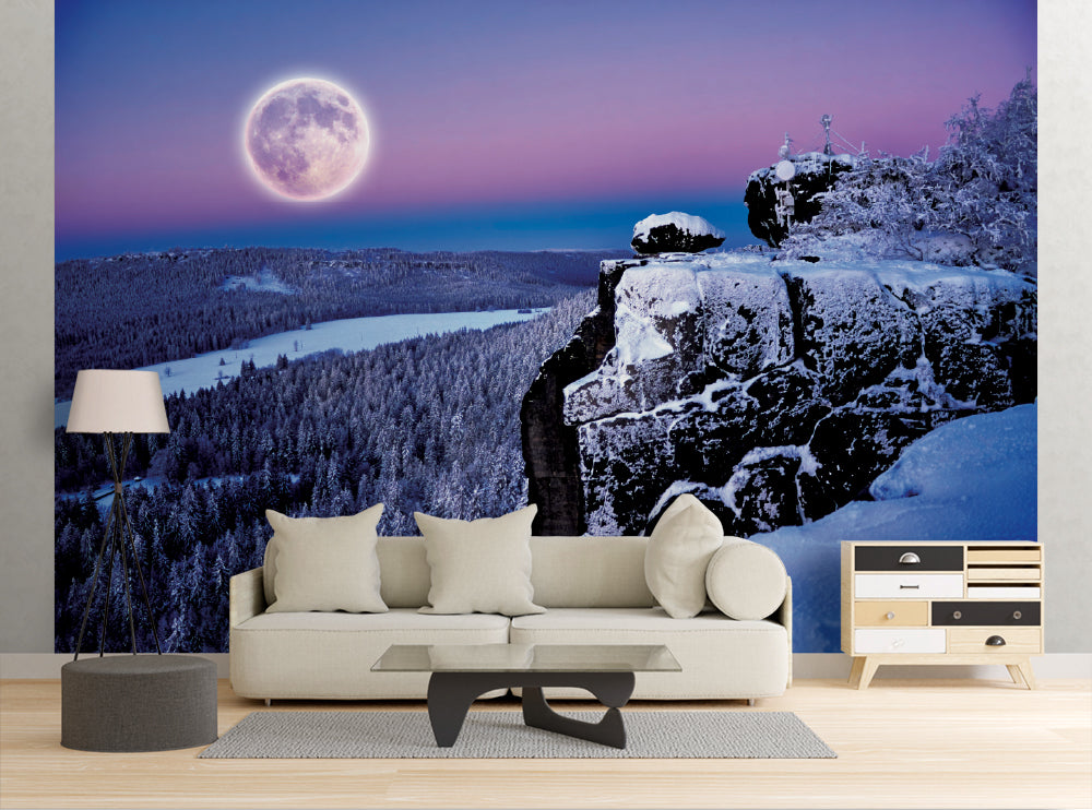 Frozen Forest - Wall Mural