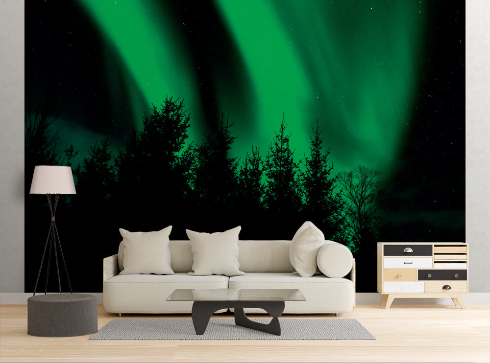 Northern Lights Behind Trees - Wall Mural