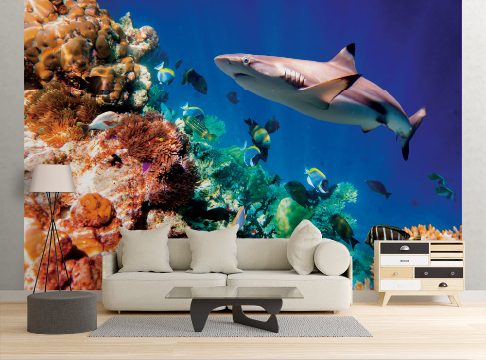 Tropical Coral Reef - Wall Mural