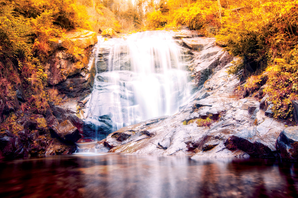 Fall Waterfall - Wall Mural