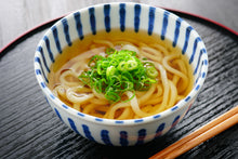 Load image into Gallery viewer, Udon Noodle 8.8oz/5pc/pk