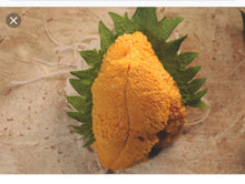 Load image into Gallery viewer, Sea Urchin (Uni) frozen 2.2 oz/PK