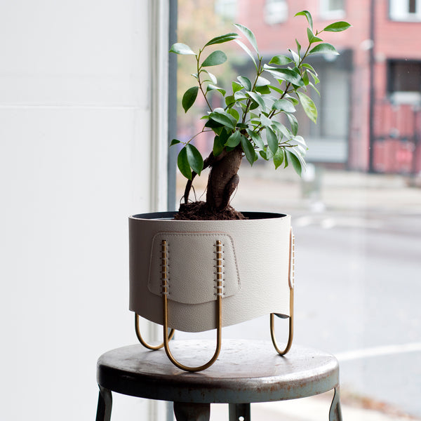 Shallow Queen Planter-Off White