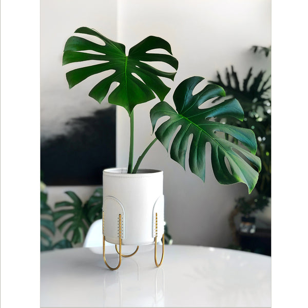 Queen Planter-Off White