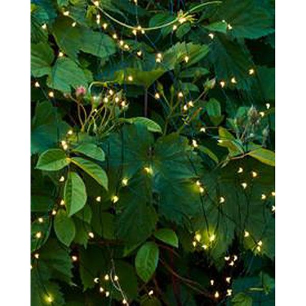 Easy to shape, string of LED Fairy Lights -Nook & Cranny Gift Store-2019 National Gift Store Of The Year-Ireland-Gift Shop