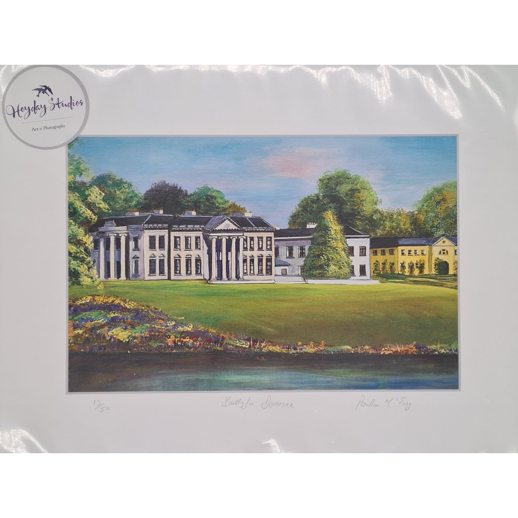 Ballyfin House - Limited Edition Mounted print-Nook and Cranny - 2019 REI National Gift Store of the Year