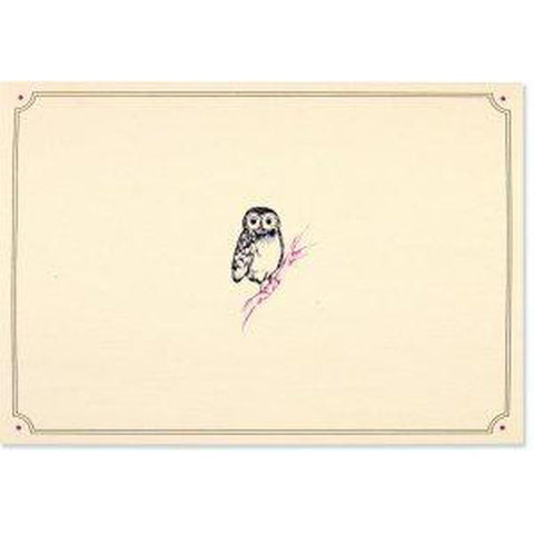 Box Set 14 Note Cards & 15 Envelopes - Owl Portrait-Nook and Cranny - 2019 REI National Gift Store of the Year