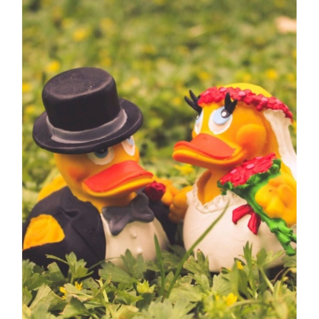 Bride & Groom Duck Pair-Nook & Cranny Gift Store-2019 National Gift Store Of The Year-Ireland-Gift Shop