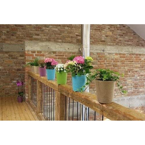 Gorgeous Hanging Pot for Plants or Herbs (Indoor or Outdoor Use)-Nook & Cranny Gift Store-2019 National Gift Store Of The Year-Ireland-Gift Shop
