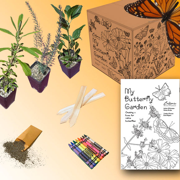 My Butterfly Garden: Children's Activity Box