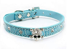Load image into Gallery viewer, Rhinestone Skull Dog Collar