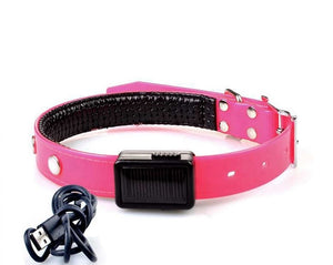 Rechargeable USB Led Dog Collar
