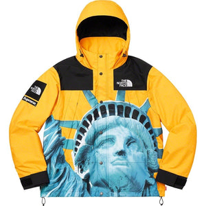 THE NORTH FACE×supreme  Statue of Liberty Mountain Jacket 男女兼用 19FWジャケット black red yellow 3色
