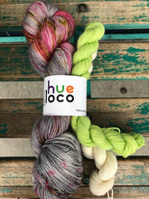 Load image into Gallery viewer, Hue Loco sock kit