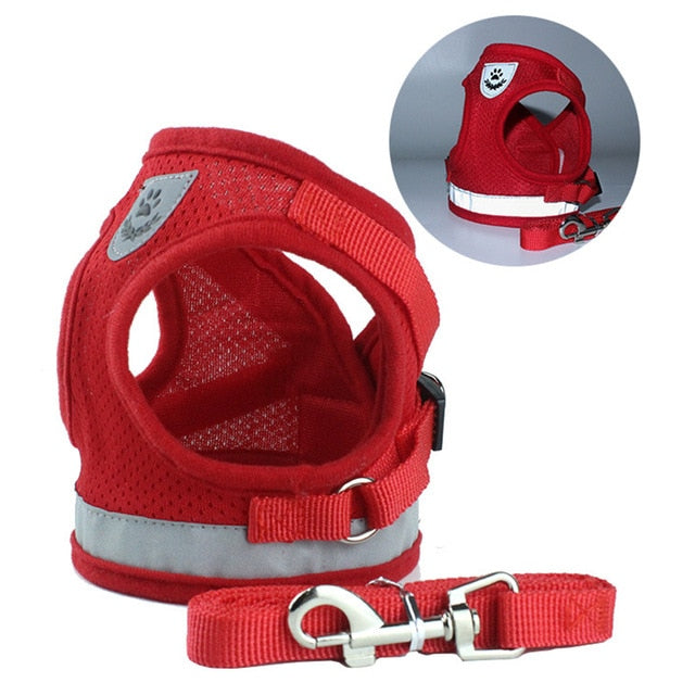 summer DOG-CAT Harness