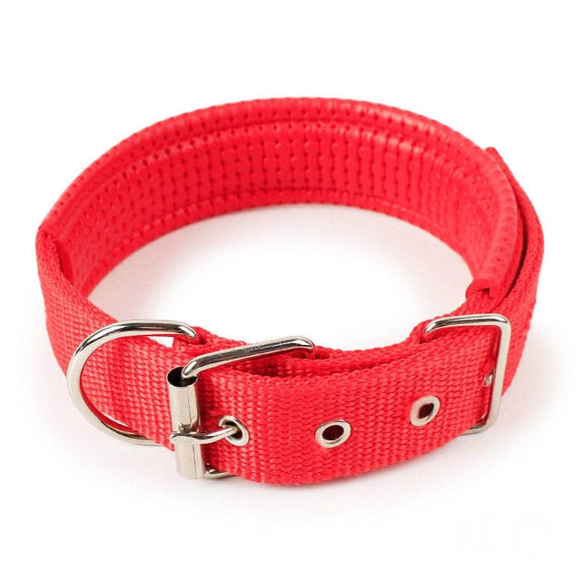 Comfortable Adjustable Nylon Strap Collar
