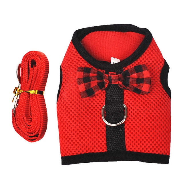 cat&Rabbit soft harness with LEASH