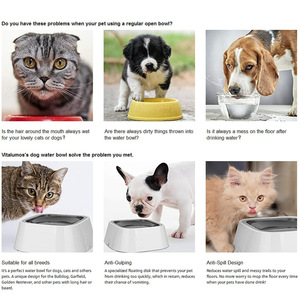 Pets Water Bowl Vehicle