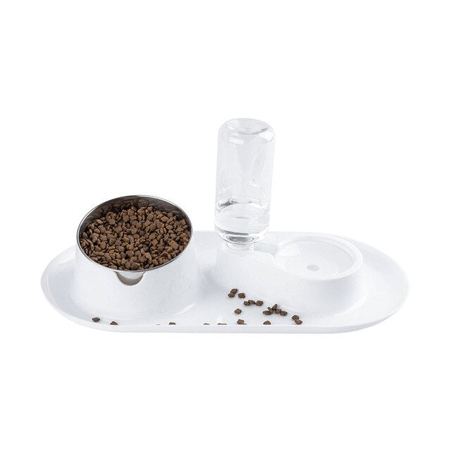 Raised Stand Bowl & Water Dispenser